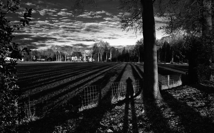 Frieslandfotografie_shadows