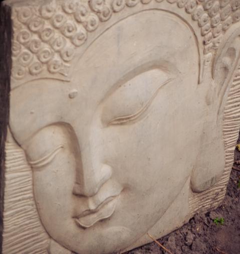 Siemy 70 jaar-5587