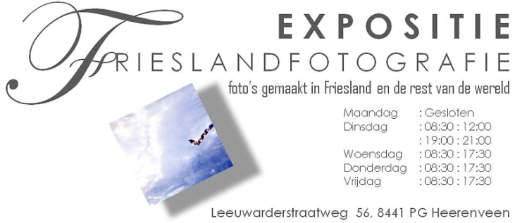 Frieslandfotografie--6