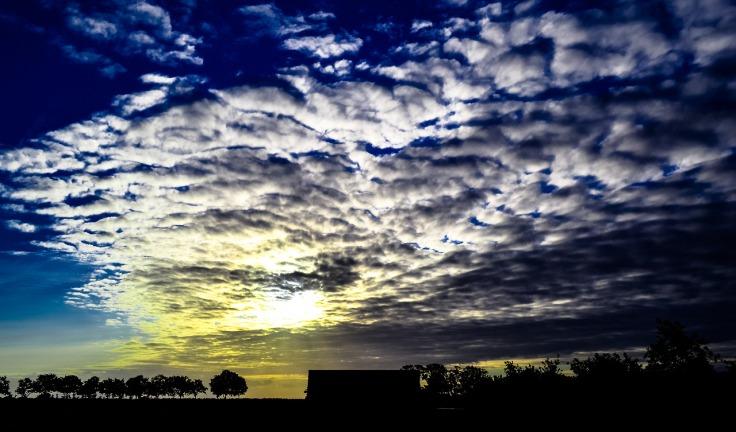 Frieslandfotografie205