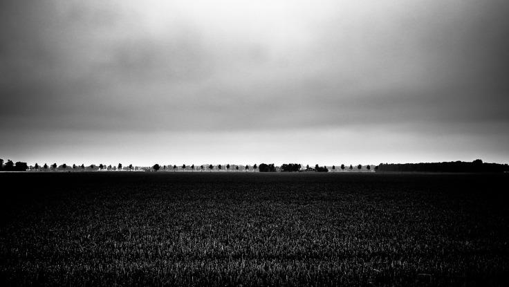 Frieslandfotografie209