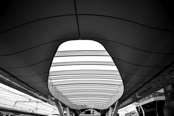 Frieslandfotografie-7196