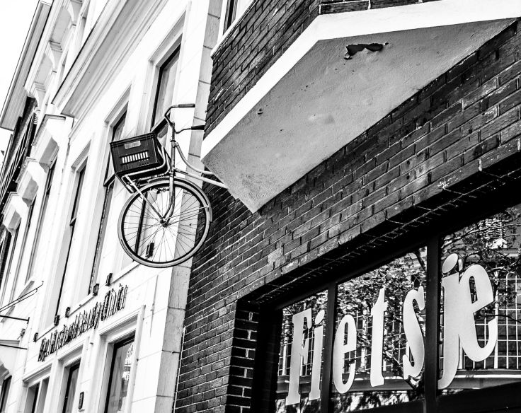 Frieslandfotografie-421