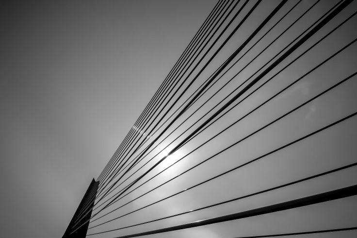 Frieslandfotografie-5497